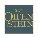 1_gutotteinstein_logo