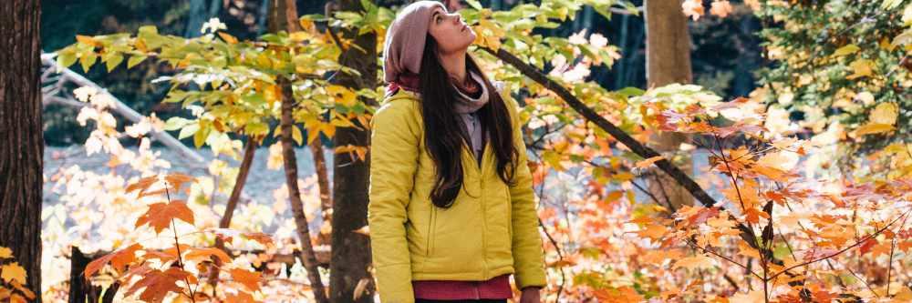 Der Wald ruft! Gesund und lebensfroh im Herbst
